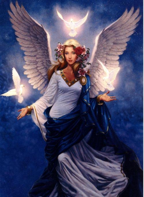 Angel-6