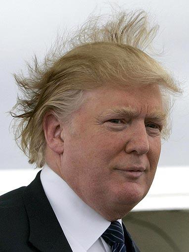 Donald-trump-wind_677511n